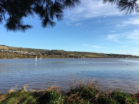 Photo of the River Teign taken from the sea wall bordering Hearn Field