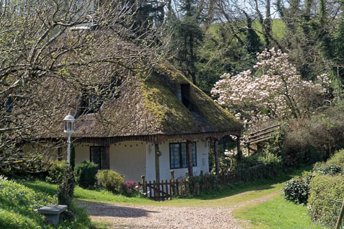 Photograph of a thatched cottage in a rural setting