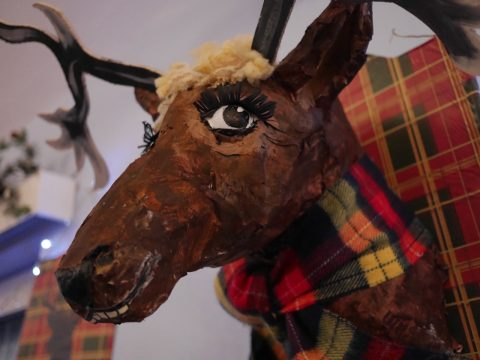 Photo of a fake, humerous mouse head plaque at Burns night