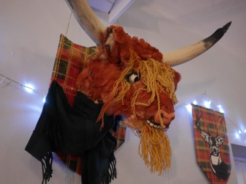 Photo of a fake, humerous highland cows head plaque at Burns night