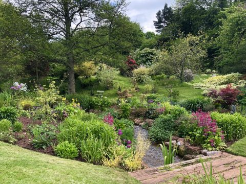 A photo of a country garden with a stream running through it in the grounds of a cottage in Combeinteignhead
