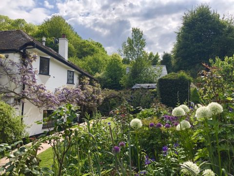 Photo of a whitewashed cottage and beautiful country garden in the foreground